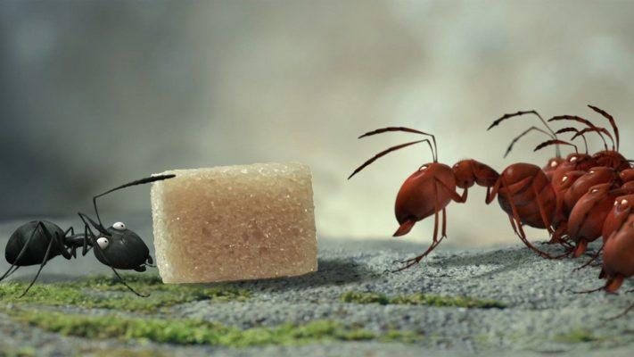 موجودات کوچک: دره مورچه های گمشده